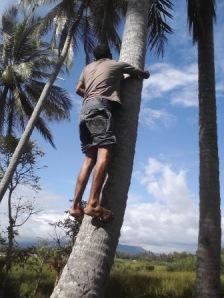 Setelah berdoa tadi, Poetra lalu memanjat